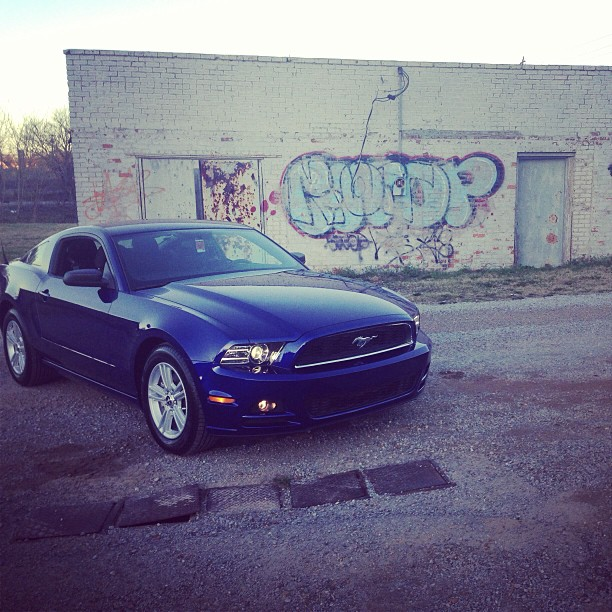 Click image for larger version  Name:mustang.jpg Views:89 Size:120.1 KB ID:81699