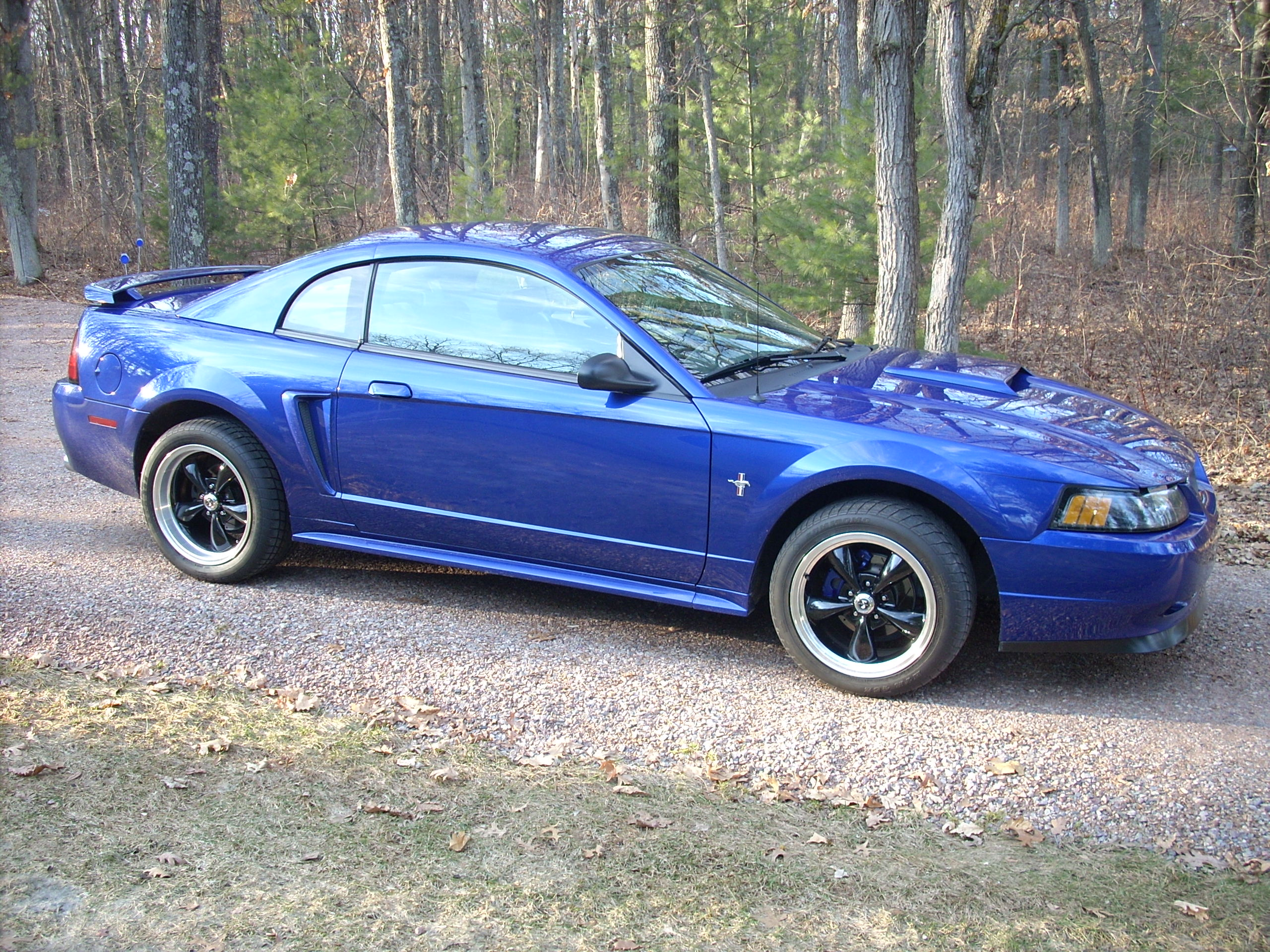 Click image for larger version  Name:Mustang Side.jpg Views:1064 Size:1.22 MB ID:21543