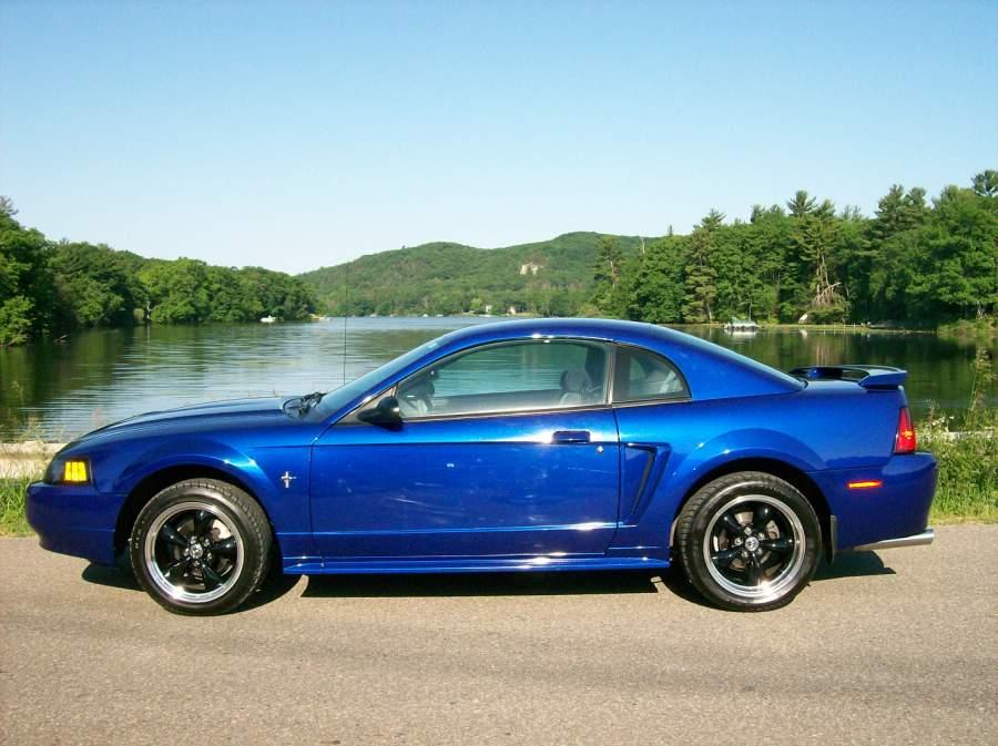 Click image for larger version  Name:mustang side pic.JPG Views:2165 Size:90.5 KB ID:20895