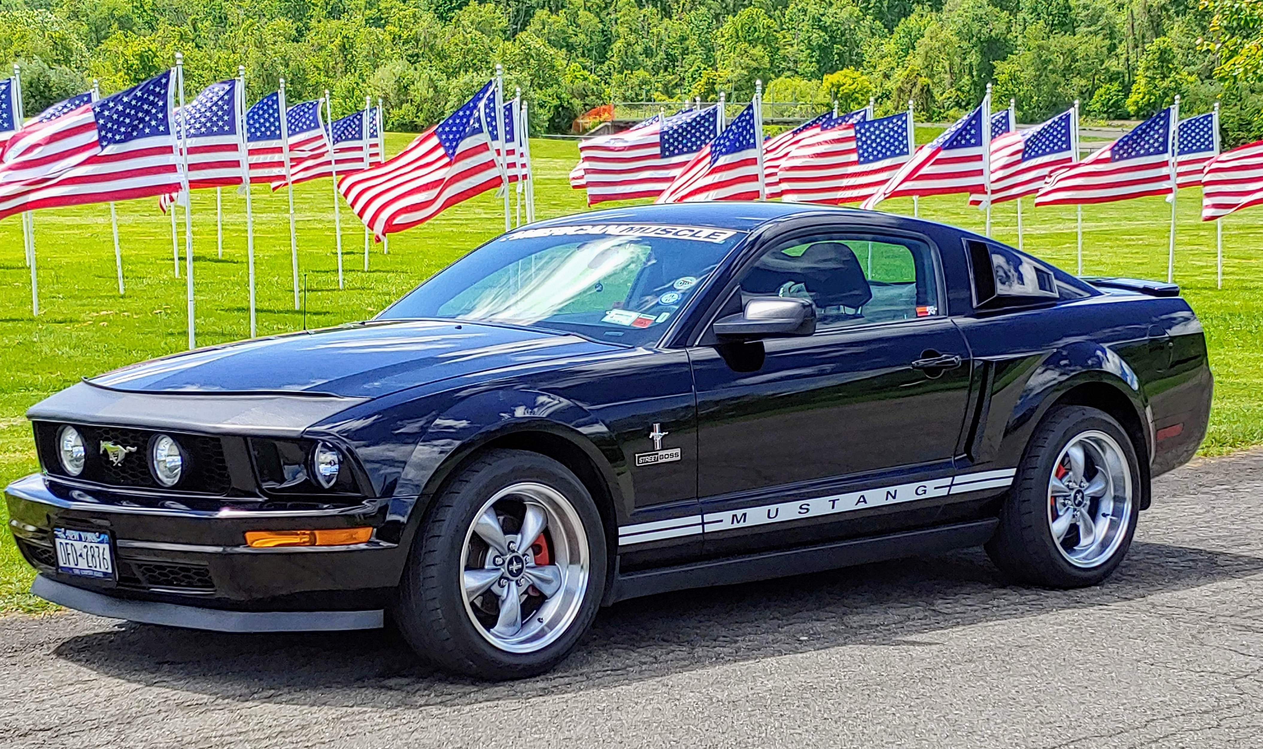 Click image for larger version  Name:Mustang with flags.2.jpg Views:16 Size:2.12 MB ID:258411