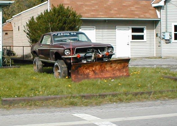 Click image for larger version  Name:mustang with plow.jpg Views:89 Size:49.3 KB ID:21548