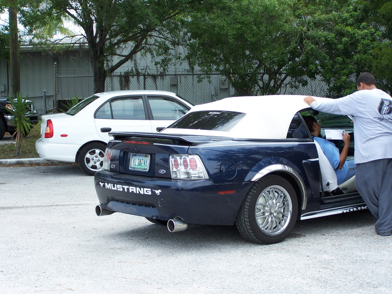 Click image for larger version  Name:mustang2.jpg Views:3052 Size:489.8 KB ID:13534