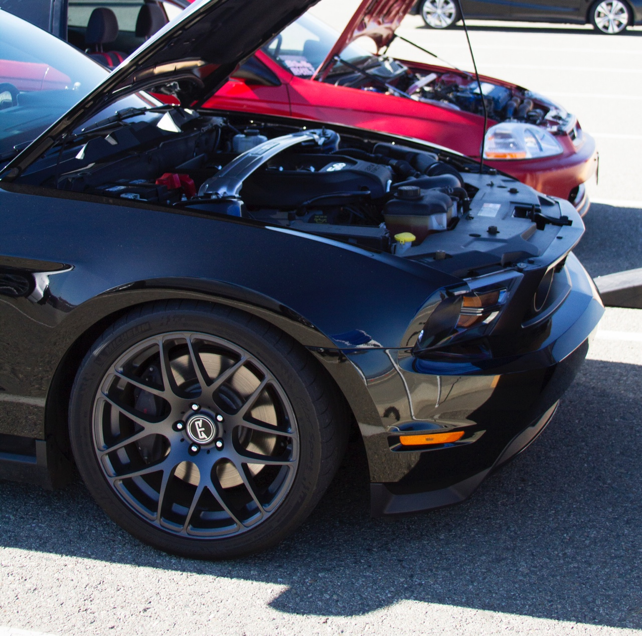 Click image for larger version  Name:mustang7.JPG Views:195 Size:634.2 KB ID:167290