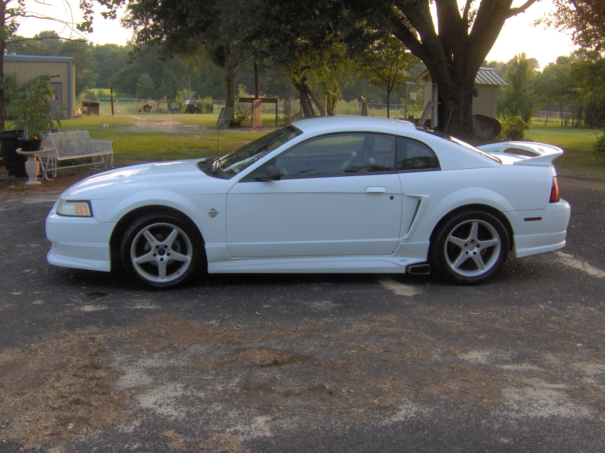 Click image for larger version  Name:my roush 005.jpg Views:1607 Size:754.6 KB ID:14758