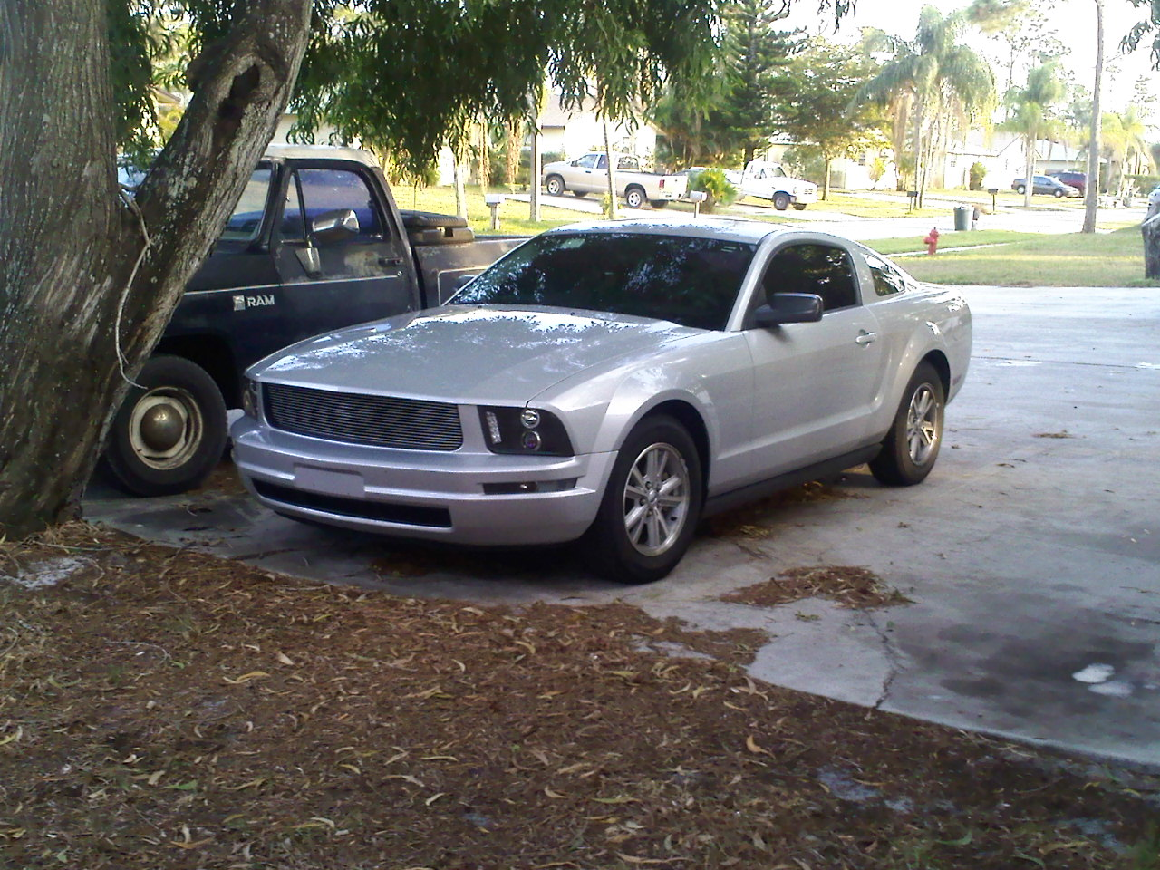 Click image for larger version  Name:mystang.jpg Views:189 Size:341.6 KB ID:21203