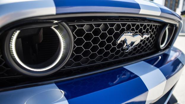 Fog Light Grille Oracles Mustang Evolution