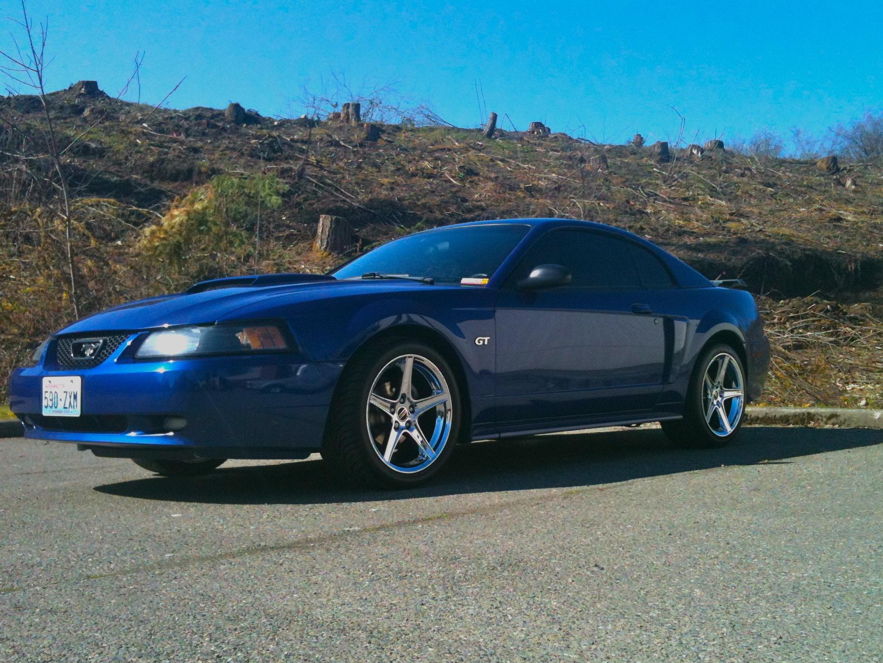 04 Mustang Gt >> New Saleen Wheels - Mustang Evolution