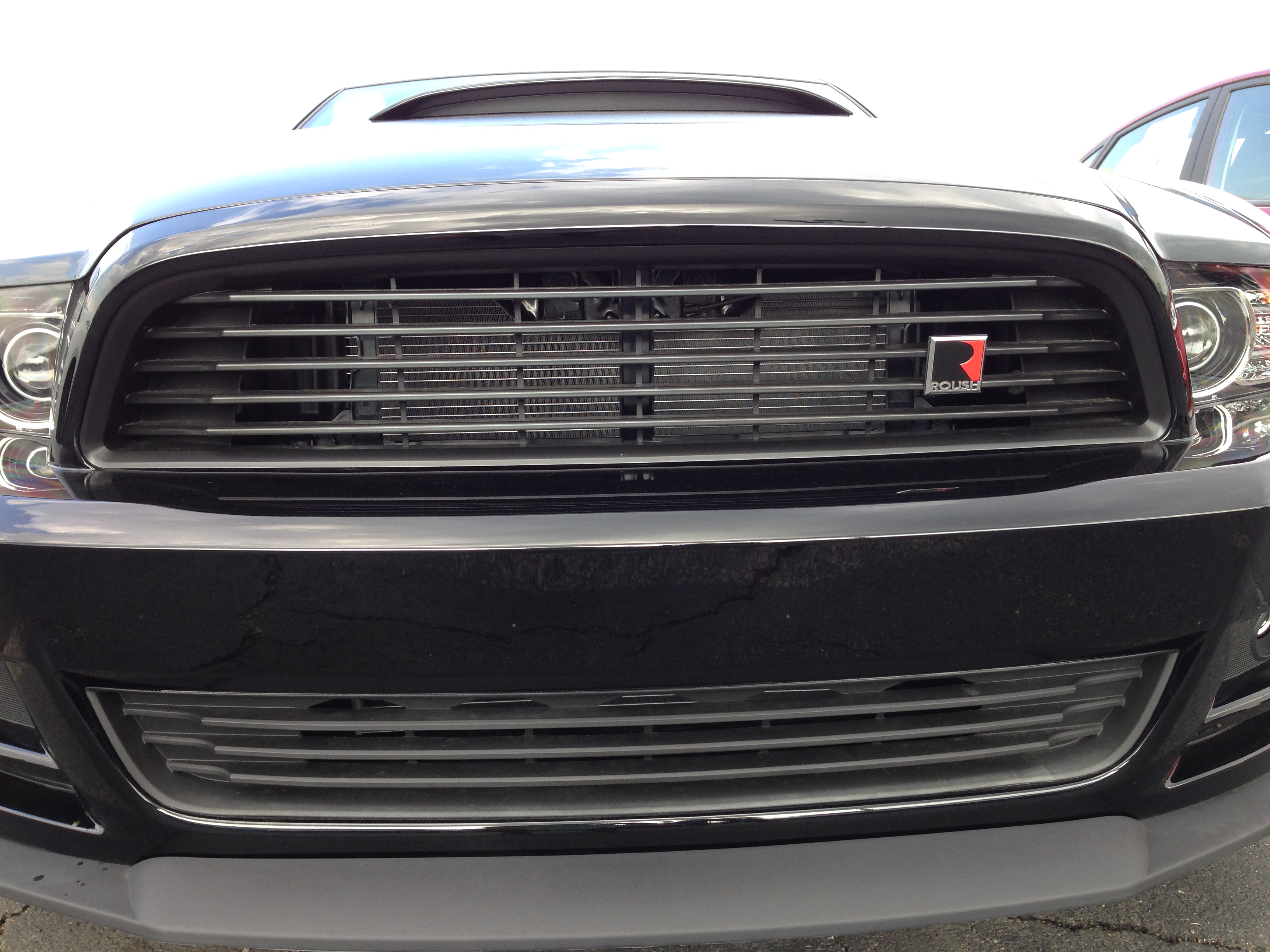 Click image for larger version  Name:RoushGrille.JPG Views:161 Size:1.83 MB ID:167213