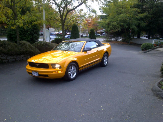 Click image for larger version  Name:Saanich-20121023-00155.jpg Views:70 Size:60.9 KB ID:138484