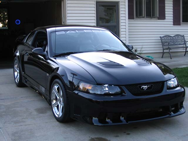 Click image for larger version  Name:Saleen 002.jpg Views:1683 Size:65.6 KB ID:10743