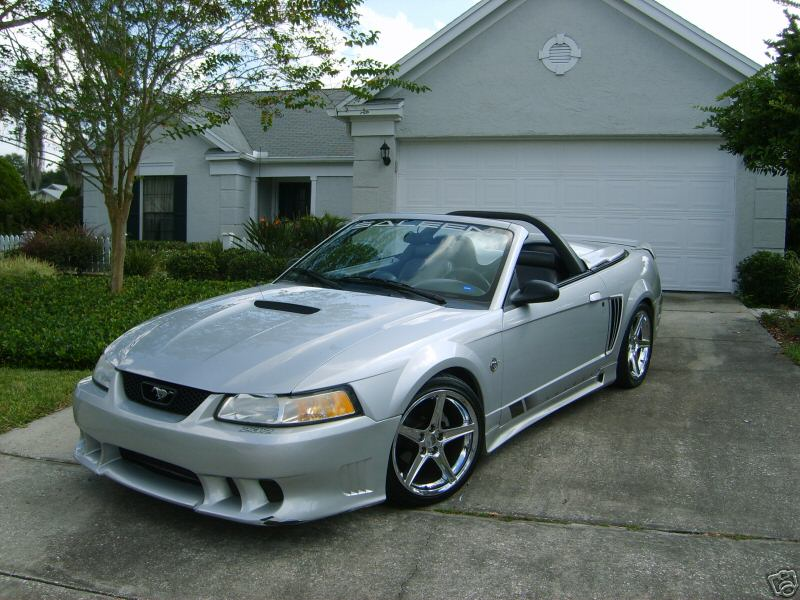 Click image for larger version  Name:Saleen.jpg Views:83 Size:95.9 KB ID:15001