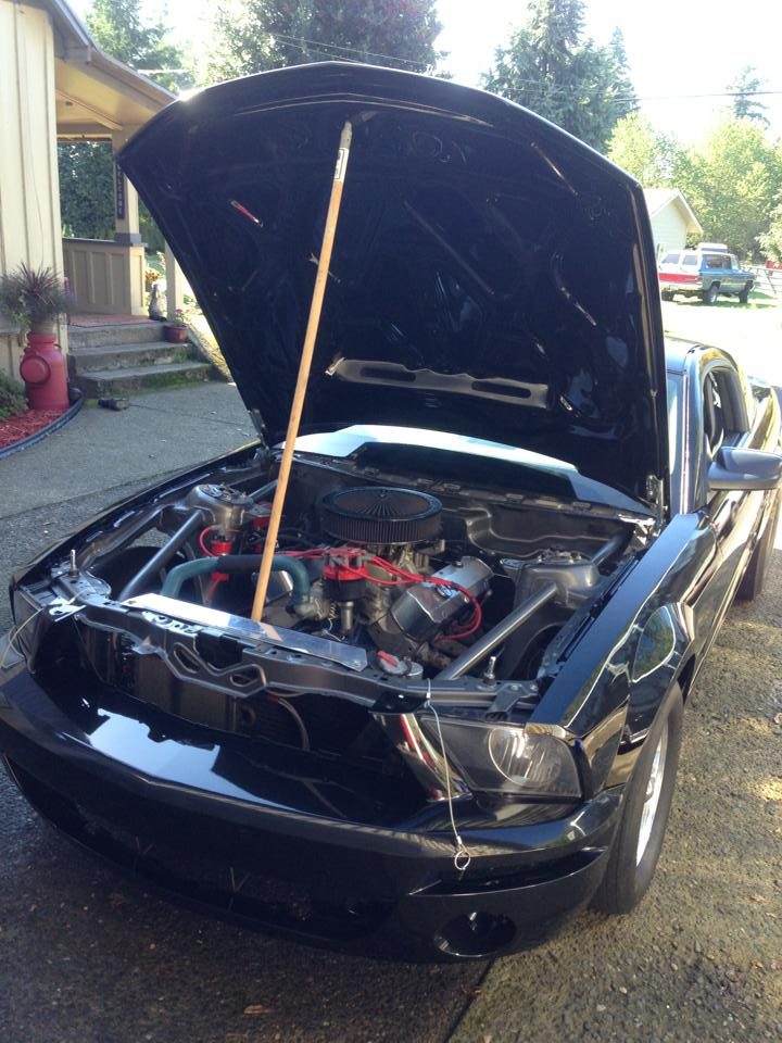 Click image for larger version  Name:shelby new bay.jpg Views:1804 Size:110.5 KB ID:144611