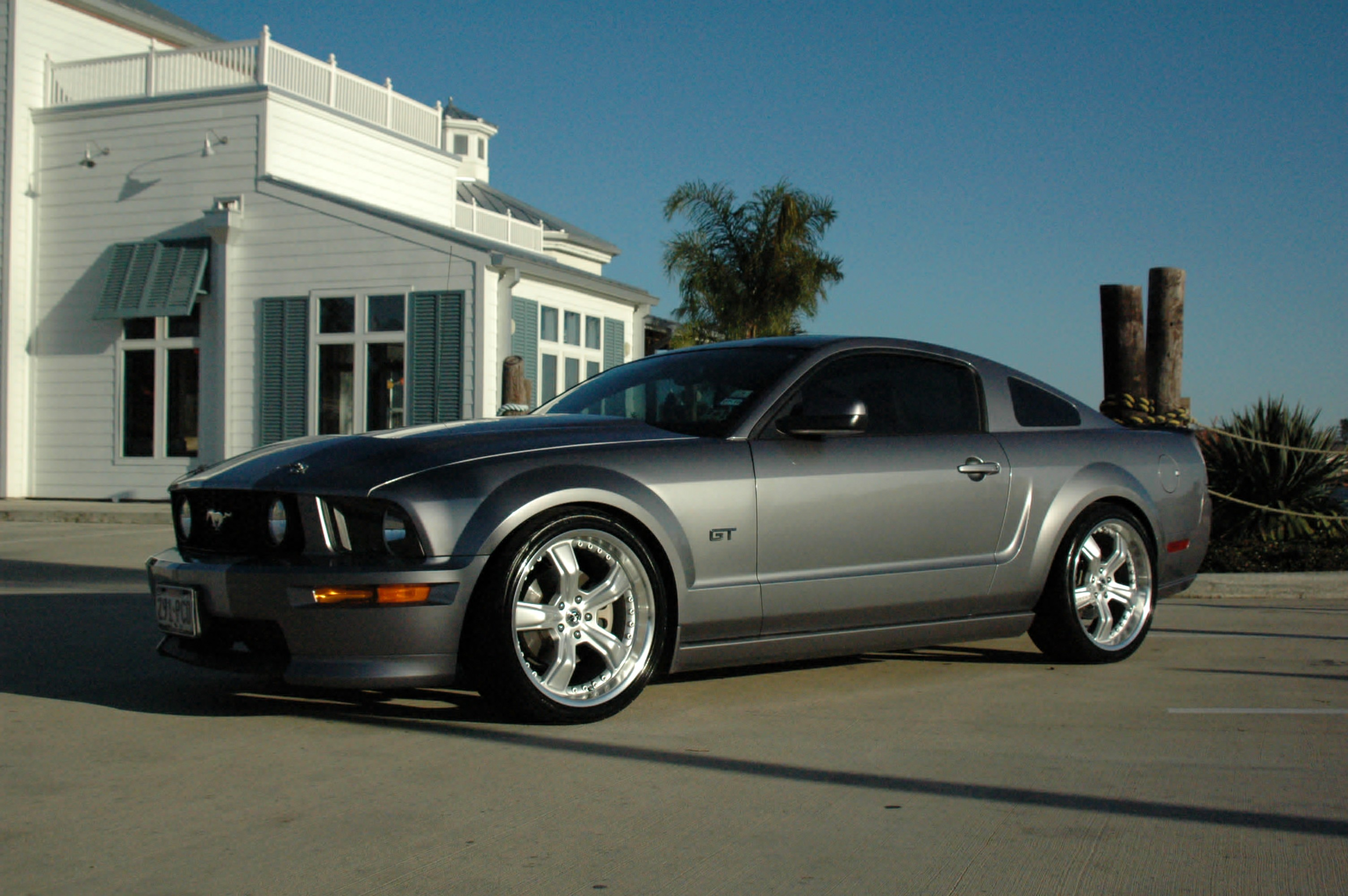 Click image for larger version  Name:Shelby Razor LS.jpg Views:250 Size:756.2 KB ID:21313