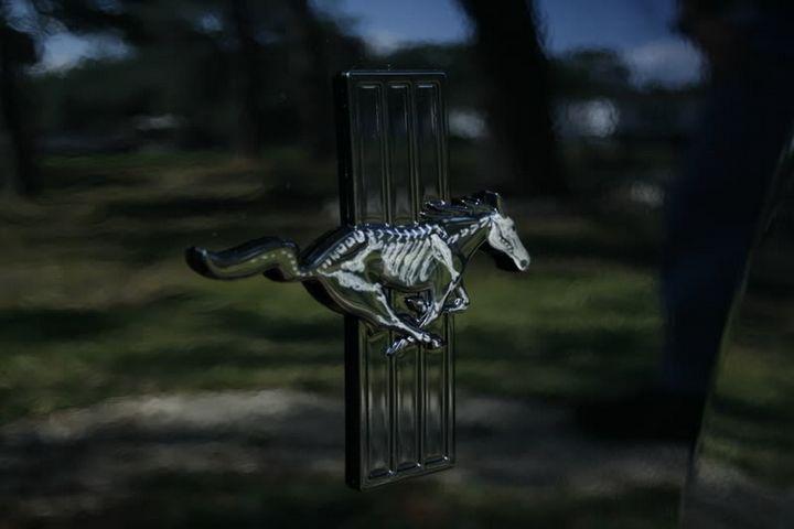 Click image for larger version  Name:skeleton_running_horse.jpg Views:1112 Size:27.8 KB ID:155359