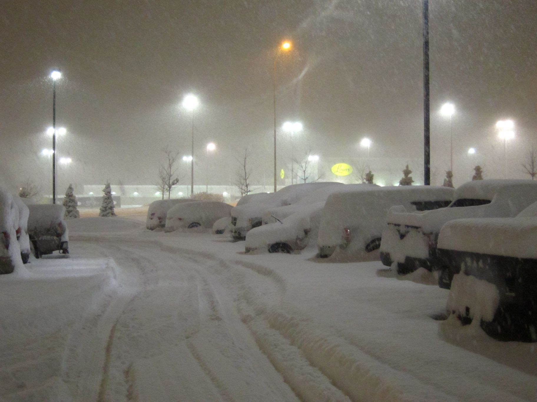 Click image for larger version  Name:snow2_021112.jpg Views:151 Size:240.5 KB ID:146449