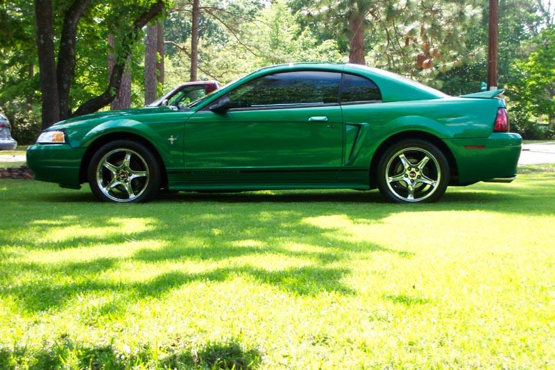 Click image for larger version  Name:Stang 24.JPG Views:83 Size:141.5 KB ID:1428
