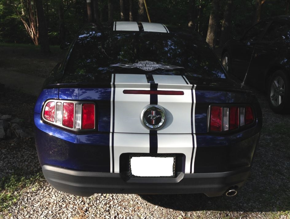 Click image for larger version  Name:Stang 3.JPG Views:37 Size:178.7 KB ID:160537