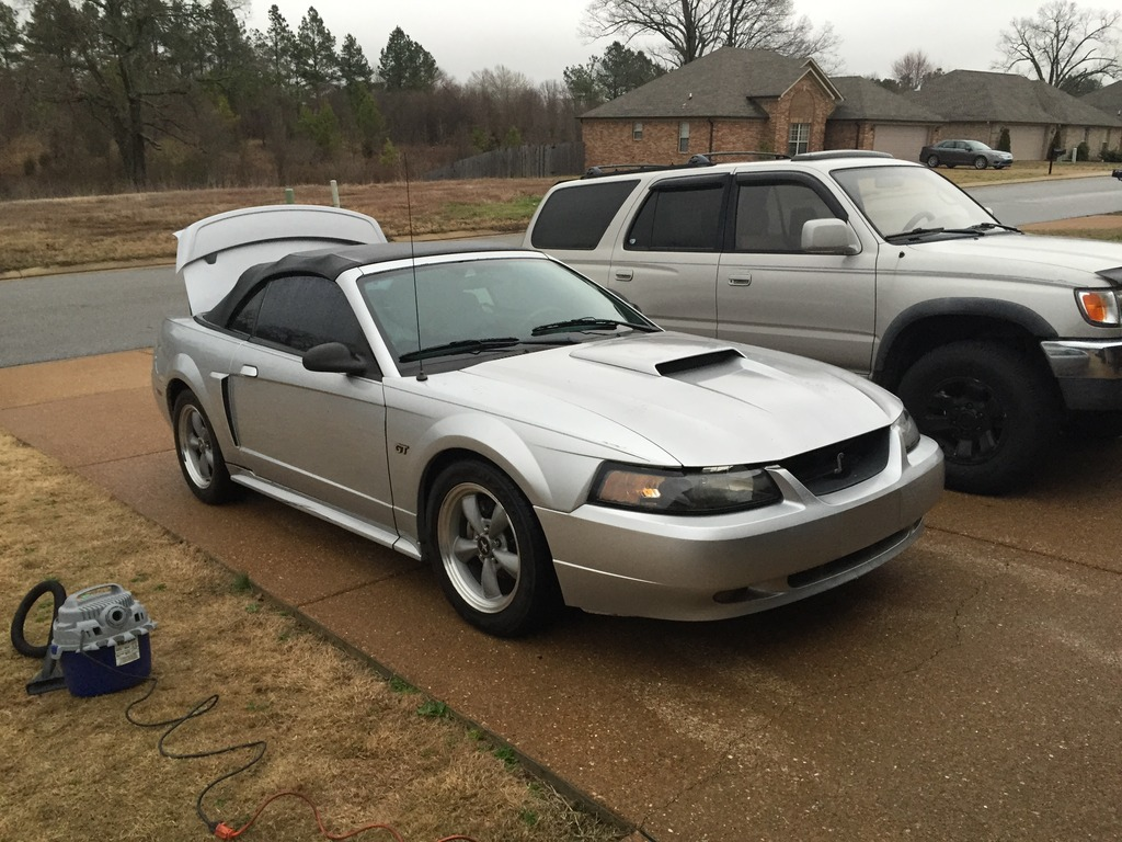 Click image for larger version  Name:stang.jpg Views:33 Size:257.3 KB ID:177966