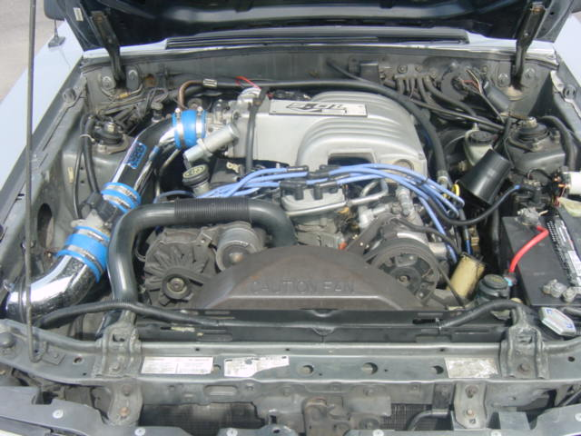 Click image for larger version  Name:Stang Pictures 013.jpg Views:301 Size:60.7 KB ID:2127