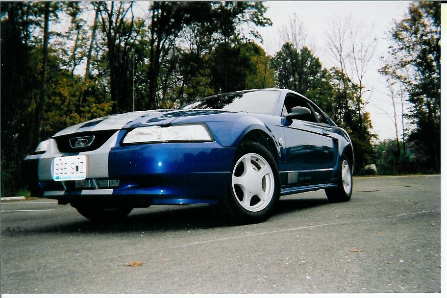 Click image for larger version  Name:stang1.jpg Views:64 Size:115.7 KB ID:4371