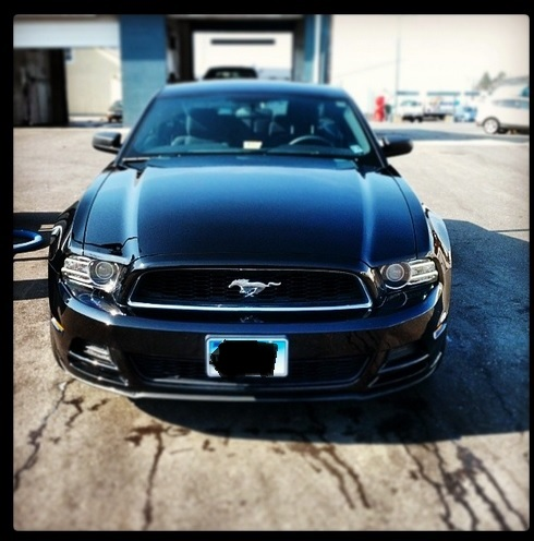 Click image for larger version  Name:stang2.jpg Views:70 Size:77.1 KB ID:171722
