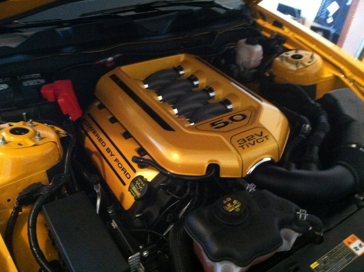 Click image for larger version  Name:underhoodstang.jpg Views:245 Size:77.5 KB ID:35225