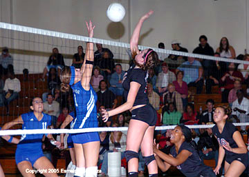 Click image for larger version  Name:Volleyball26.jpg Views:179 Size:37.9 KB ID:13904