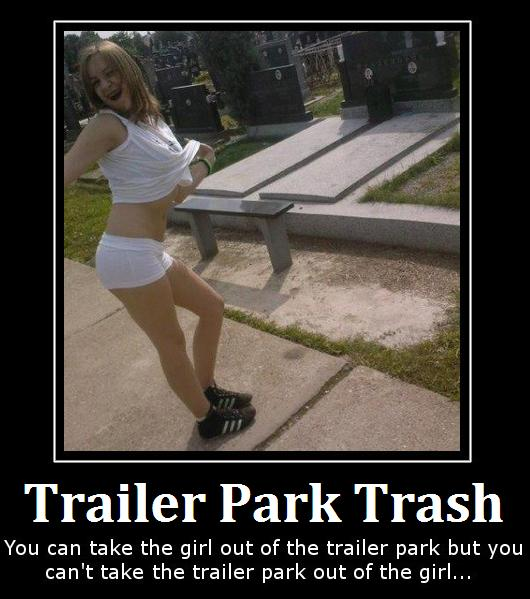 Click image for larger version  Name:web-dating-picture-of-trailer-park-trash.JPG Views:104 Size:51.4 KB ID:131808
