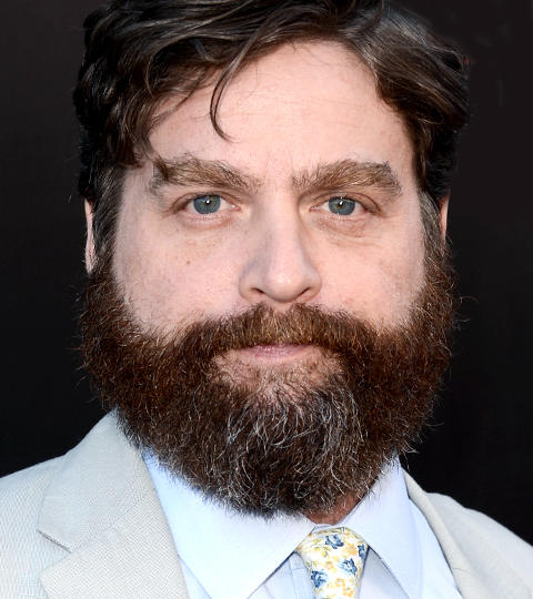 Click image for larger version  Name:zach-galifianakis_1.jpg Views:69 Size:47.3 KB ID:190161