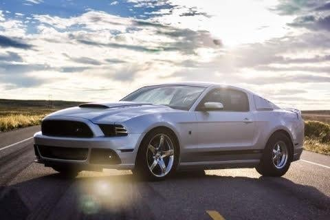 Showcase cover image for mustang
