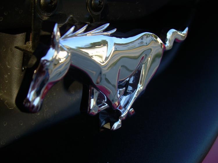 02 Mustang GT 020