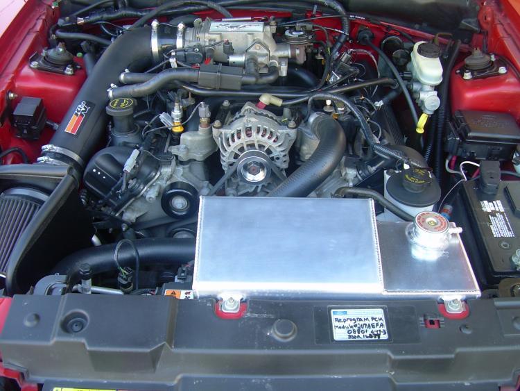 02 Mustang GT 025
