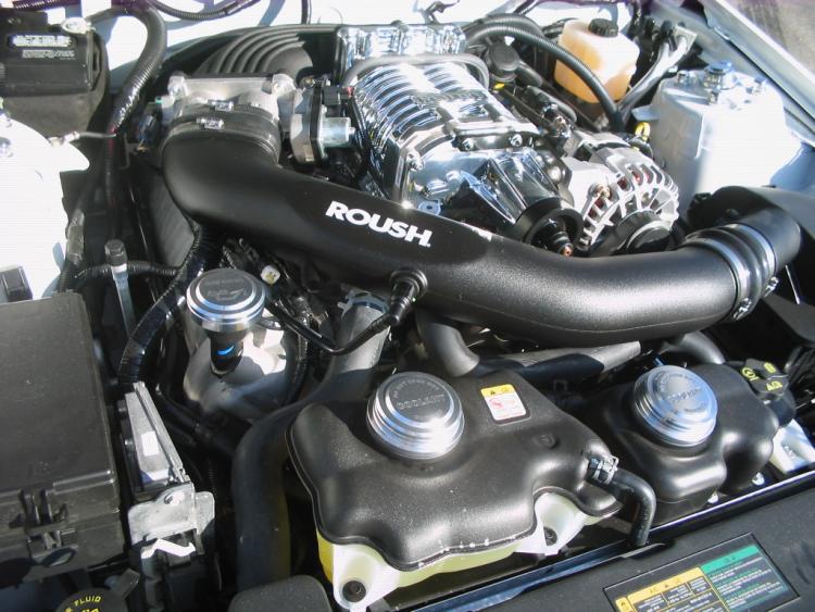 2008 roush 428R 7
