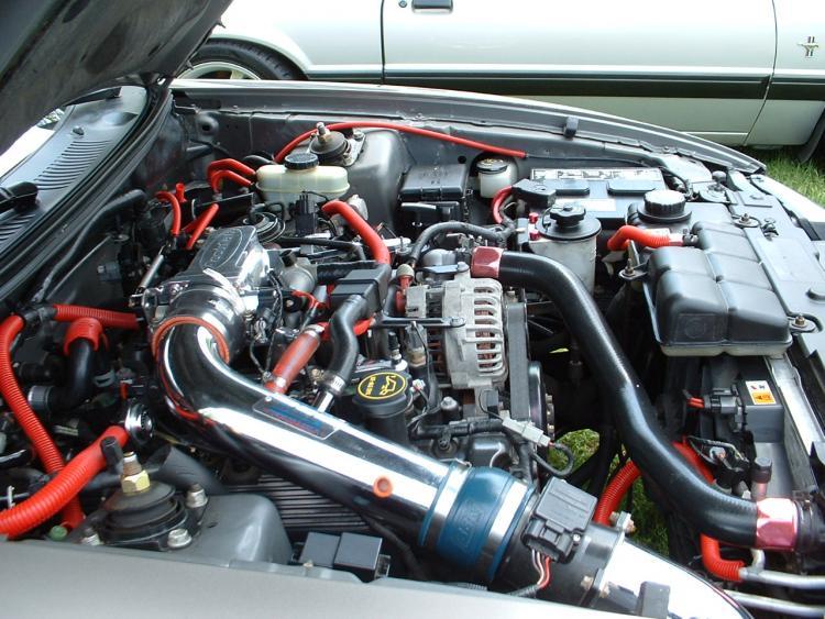 6 1 2008 Mustang Spring Round Up Kaytes Ford  Warwick NY 005