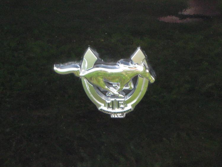 7 28 2010 001