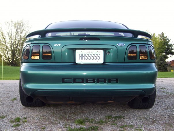 97 SVT Cobra with 03 Cobra rear end transplant