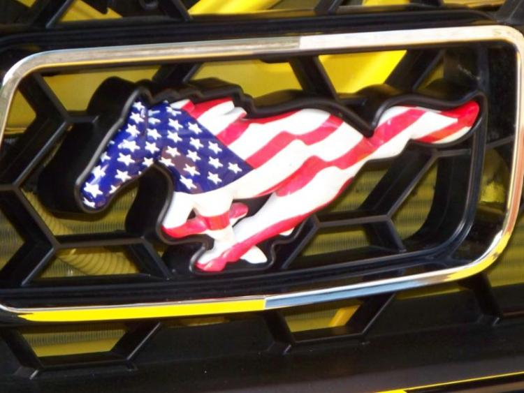 A patriotic mustang never goes out of style....protest the war, always support the troops