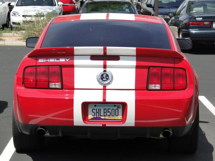 Back end of the Shelby.