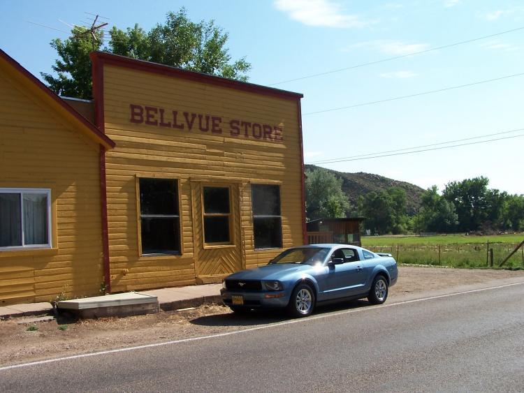 Bellvue Store iii