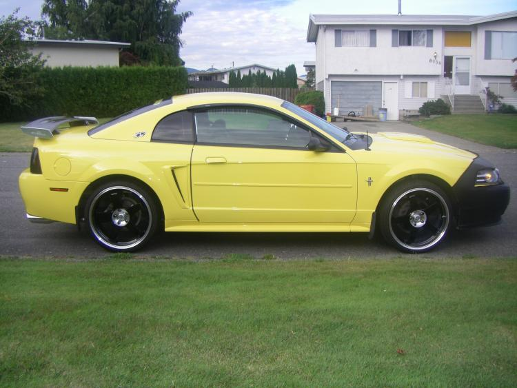 Brians Stang 8