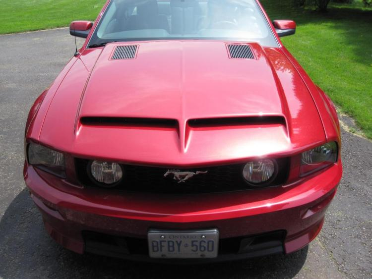 Cervini's Auto Design Ram Air Type IV Hood with Billet Inserts