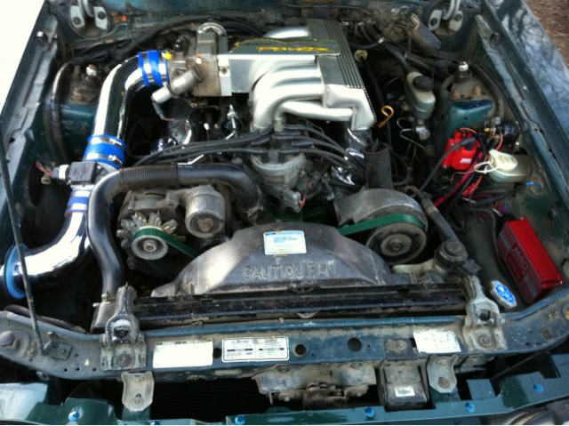 Cleaned out engine bay!