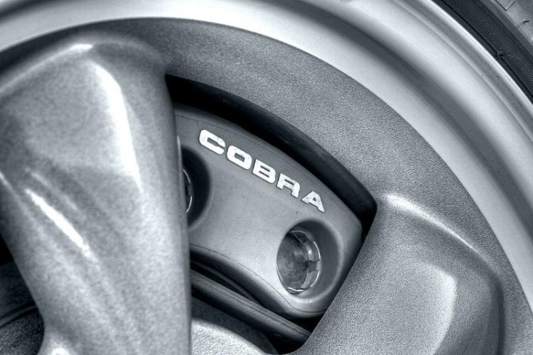 Cobra Brakes
