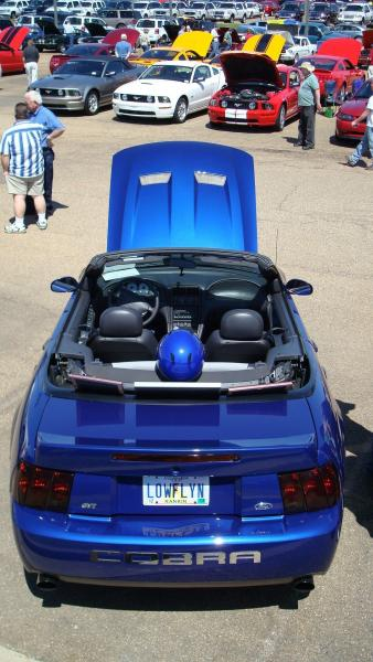 Cool car show pic