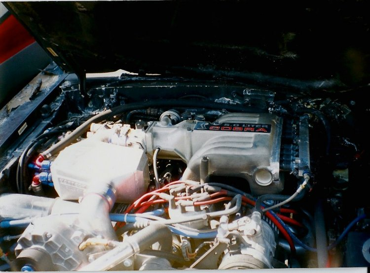 Engine Firewall Damage (Pic provided by previous owner)