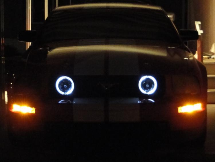 Halo Fog lights
