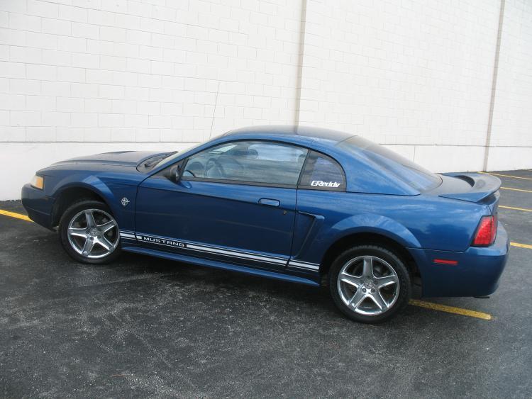 Mustang. 11.