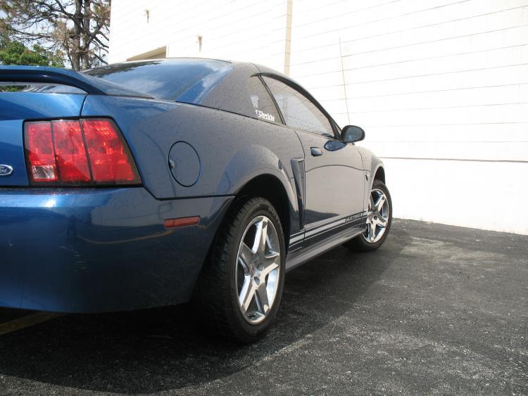 Mustang. 13.