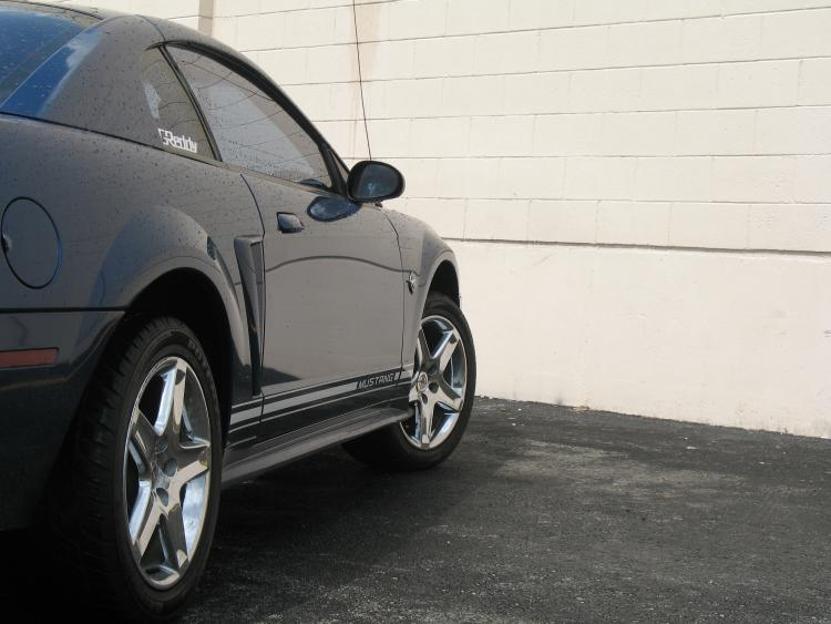 Mustang. 14.