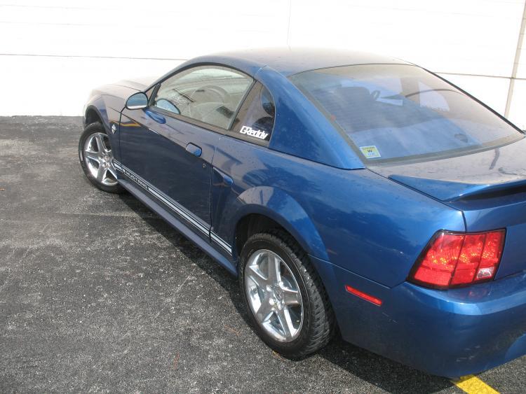 Mustang. 16.